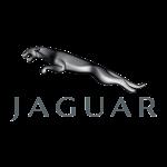 Jaguar-1-150x150